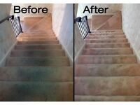 Marc's carpet cleaning services