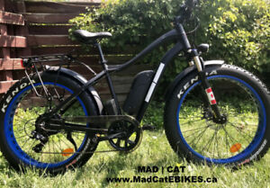 FAT TIRE EBIKE!HUGE 4INCH TIRES! WINTER READY!