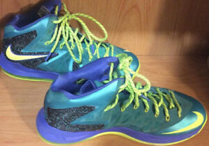 Lebron James Sneakers Size 12