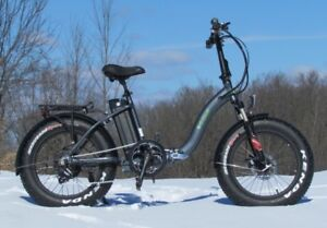 Trillium E-Bike - Fat Tire E-Bike for sale