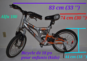 "Bicyclette de 18 po pour enfants. Kids' 18"" Bicycle."