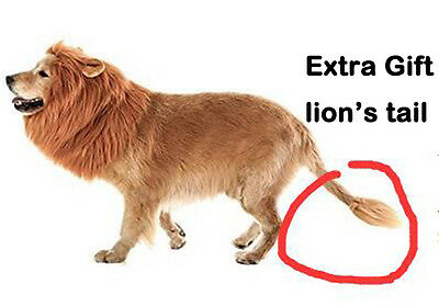 Lion Mane for Dog, Dogloveit Dog Costume with ears and Gift [Lion Tail] Lion Wig](Lion Ears And Tail)