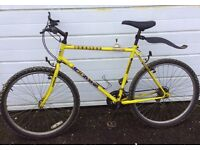 Mountain Bike Townsend