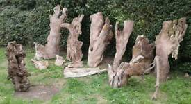 Natural Tree Trunk Bark