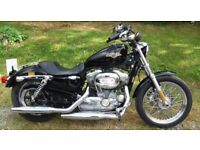 Harley Davidson Sportster XL883 Low - 12 mths MOT Low Mileage