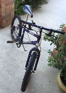 """20"""" for boy,5 speed,only bike,no other thing"""