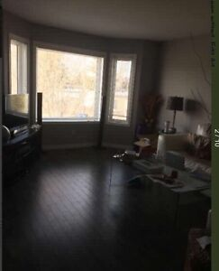 3rd bedroom - available July 1st