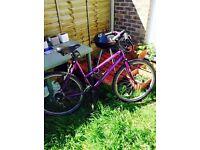 Ladies Mountain Bike needs repair