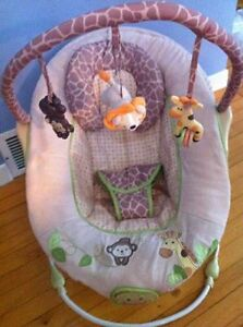 Gender Neutral Baby Bouncer/Bouncy Chair