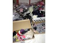 bulk job lot over 200 hair items branded high end stock