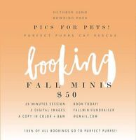 Fall Portaits for a good cause!