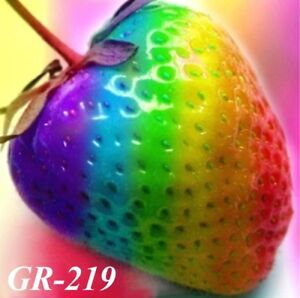 """GR-219 / 200 Graines de FRAISE """"ARC-EN-CIEL""""  GGGG"""