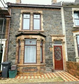 4 bedroom student house NO AGENCY FEES