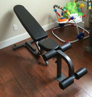 Northern Light Top of the Line Adjustable Bench - Newest Model!!