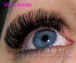 Eyelash Extension Training & Certification, Vol. Lashes 2D,3D,4D Stratford Kitchener Area image 4