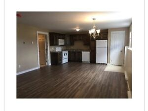 1 Bedroom Apartment Available Immediately