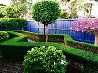 OakWoods Landscaping & Gardening Services.