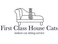 Cat sitter. Exclusively for Indoor Cats. Discreet, dependable, professional and personal.