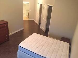 1 Bedroom Furnished Condo in new building 1800/pou