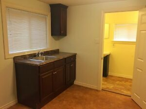 CENTRALLY LOCATED HOUSE FOR LEASE. FULLY RENOVATED St. John's Newfoundland image 3