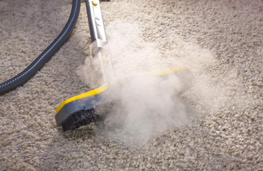 Top 3 Carpet Steam Cleaners