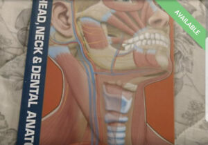 Dental assisting textbook. Head and neck anatomy