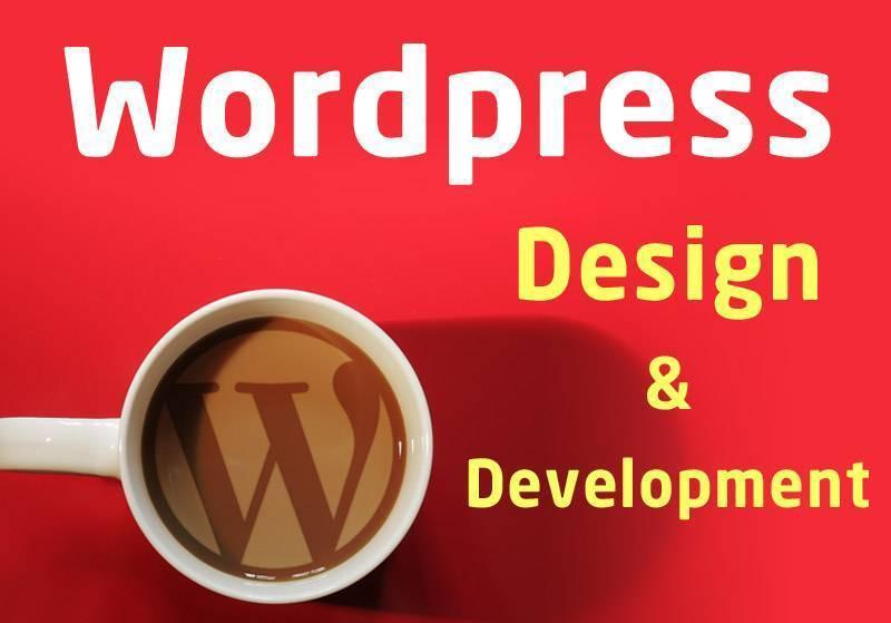 Wordpress Websites Professional Development and Design | Other