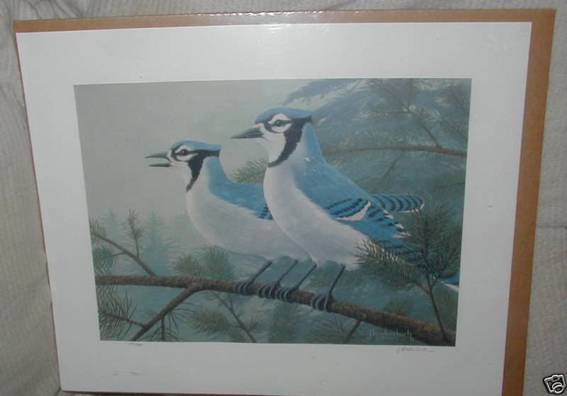 DC: J. Heidersbach, Signed Numbered Print, Blue Jays