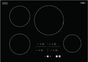 Liquidation Pricing 30 Or 36 Ancona Elite Induction Cooktop