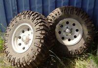 "2 Big Gnarly Tires on 16"" Aluminium Rims"