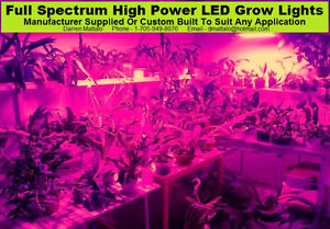 FULL SPECTRUM LED GROW LIGHTS FOR INDOOR SEED & PLANT GROWING