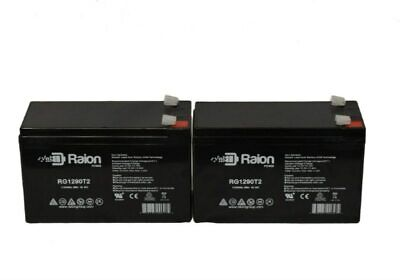Raion Brand 12V 9Ah Sla BATTERY APC BACK-UPS NS1250, NS 1250
