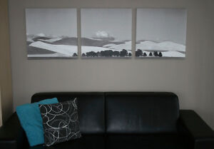 3 coordinating IKEA pictures (stretched canvas)