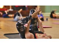 Hatha Yoga Classes At The Yoga Space