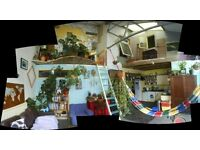 Christmas/New Year Short term sublet in fun warehouse