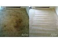 professional carpet cleaning any 2 room any size £30