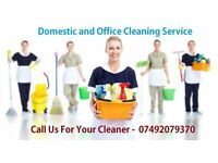 Domestic Cleaning, End of Tenancy Cleaning, Carpet Cleaning