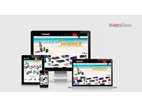 Freelancer For NetSuite E-commerce Website Development Services | E-commerce Website Designing