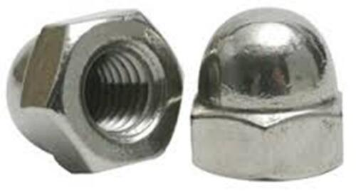 Stainless Steel  Acorn Cap Hex Nuts NC 1/4-20, Qty-25