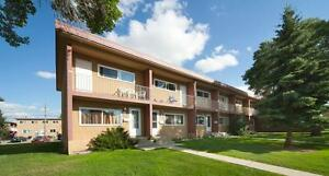RENT A 3 BEDROOM FOR THE PRICE OF 2 - Near Shopping &... Edmonton Edmonton Area image 10