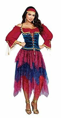Crystal Ball Gypsy Halloween-kostüm (Dreamgirl Gypsy Crystal Ball Fortune Teller Adult Womens Halloween Costume 10669)