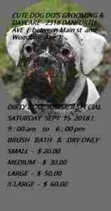 DIRTY DOG SUMMER SPECIAL! - SAT SEPT 15! - 416-459-9443