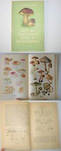 MUSHROOM-of-ESTONIA-rare-illustrated-book-1956
