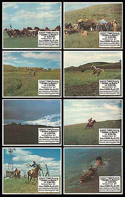 BORN TO BUCK orig1968 lobbycard set CASEY TIBBS/WILD HORSE ROUNDUP 11x14 posters