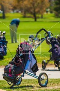 Push cart de golf