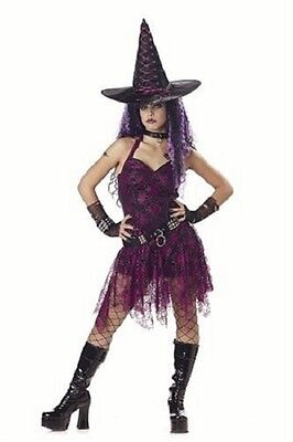 Pink And Black Costume (Goth Rockin' Witch Hot Pink Black Adult Costume -)