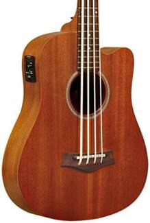 Gold Tone GT-Series Bass Guitar 4-String Acoustic MicroBass