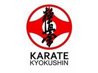 Kyokushin Karate class