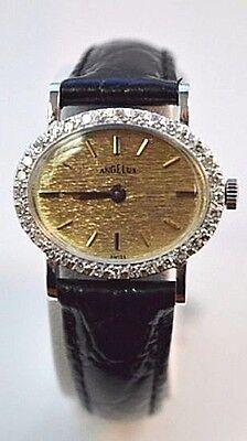 W469- Ladies 14K White Gold Angelus Diamond Watch with Diamond Bezel