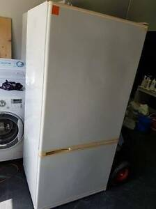 Second hand Fridge/Freezer F&P 499 Litre ( SFF 100 ) Helensvale Gold Coast North Preview
